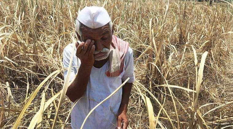 सरकारच्या मदतीकडे शेतकर्यांच्या नजरा