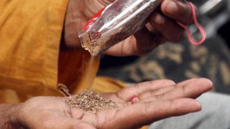 श्रीगोंदा : अनधिकृत गुटखा विक्री प्रकरणात कारवाईला सुरुवात