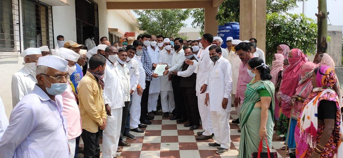 इगतपुरी : भात पिकावर रोगाचा व किडीचा प्रादुर्भाव