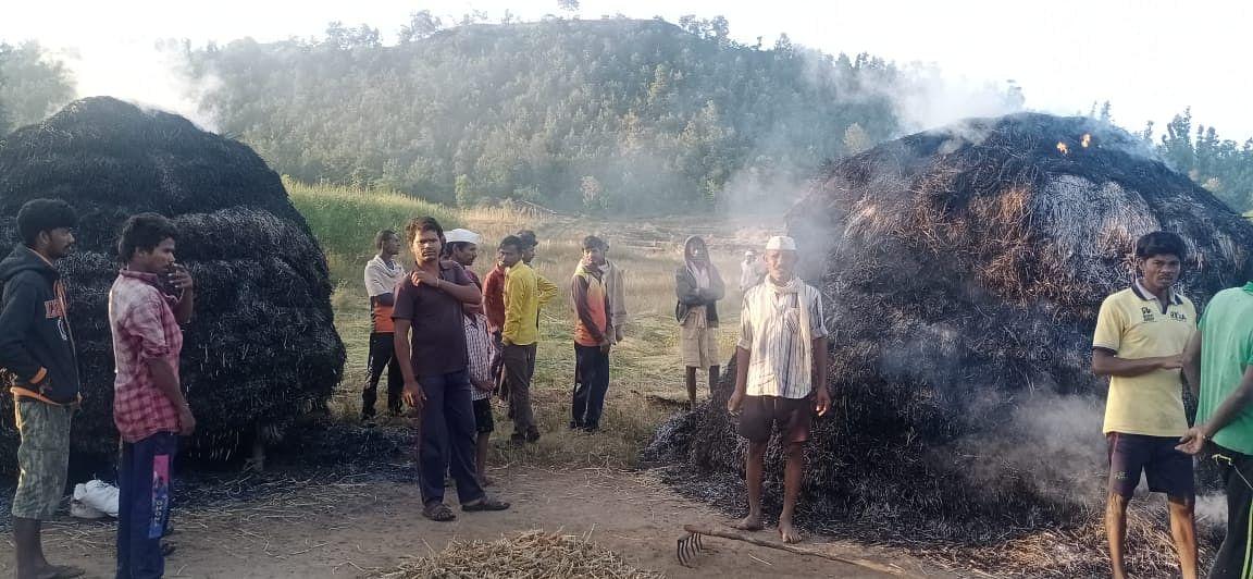 पेठ : वाजवड येथे आगीत भात पिकाचे नुकसान