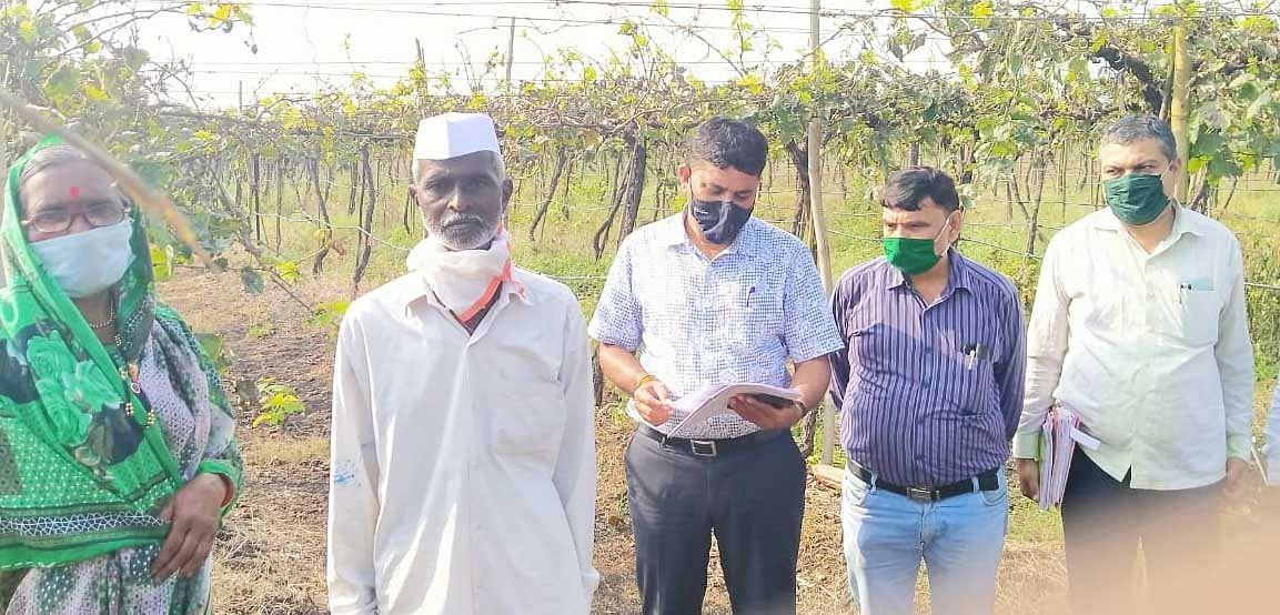 आत्महत्याग्रस्त शेतकरी कुटुंबांसाठी ' उभारी '