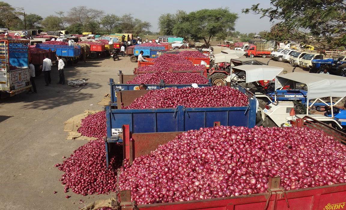 बाजार समित्या बंदचा फटका शेतकर्यांनाच