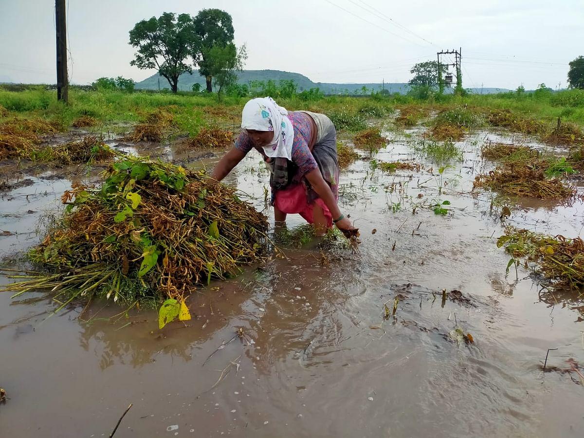 Video : शिंदवडला दोन तासांत ६० मिलीमीटर पेक्षा अधिक पाऊस