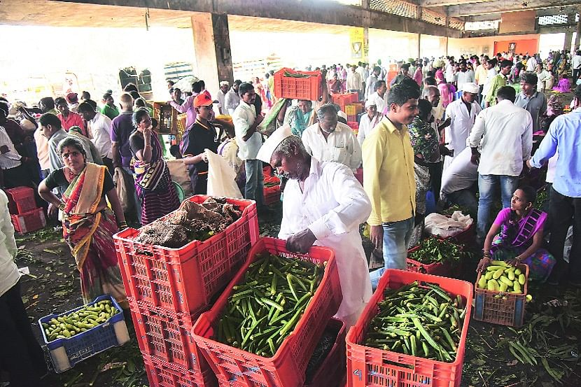 Vegetable supply rises to Nashik APMC