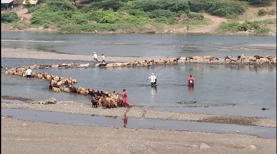 नांदगाव : बोराळे येथील शेतकऱ्यांची जीवघेणी कसरत