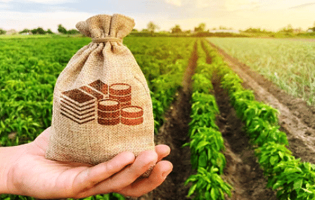 धारण क्षेत्र आणि कृषी कर्ज