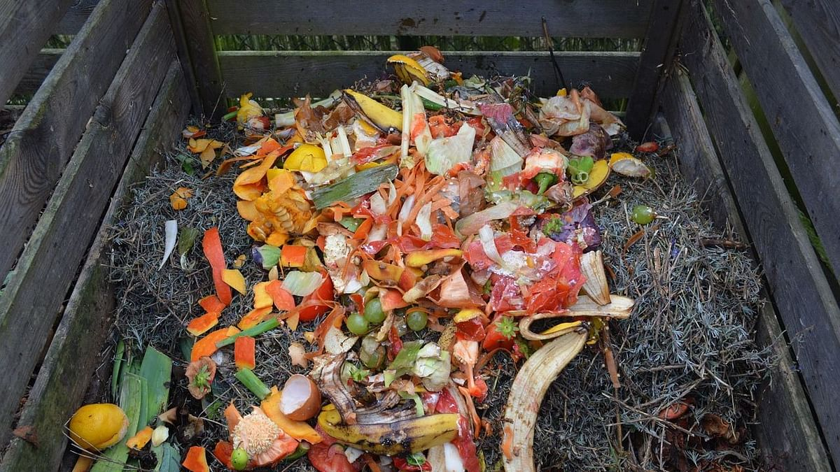 NMC appeals to take part in home composting project