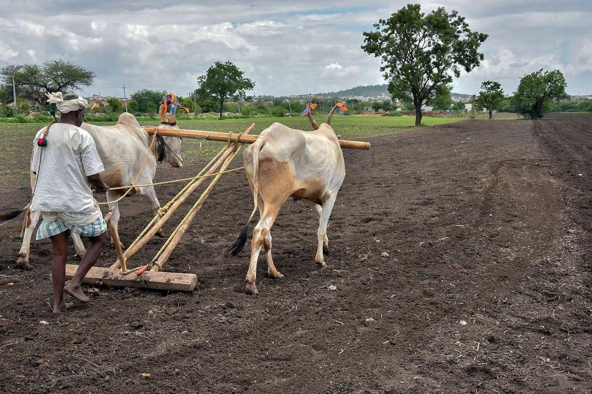 राष्ट्रीय किसान मोर्चाचे धरणे आंदोलन