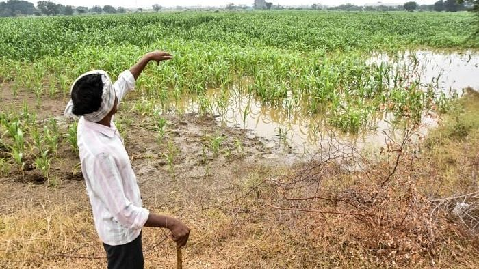 Rs 1.80 cr recovered from 11,000 ineligible farmers in district