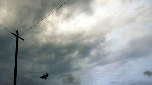 उत्तर महाराष्ट्रासह राज्यात अवकाळी पाऊस