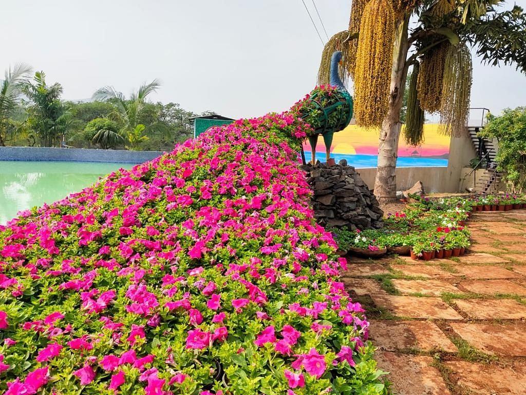 Asia's first Dubai-style flower park opens for public