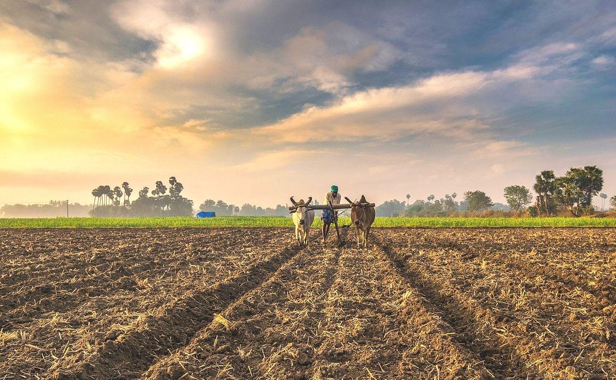 'रिसोर्स' बँकेत नाशिकचे 362 शेतकरी