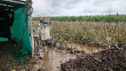 200 farmers received Rs seven crore