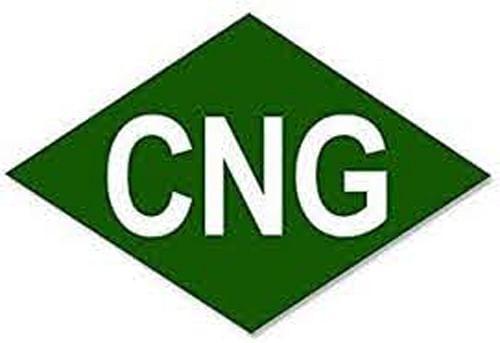 नॅचरल गॅस प्लँट बांंधकामाचे उद्घाटन