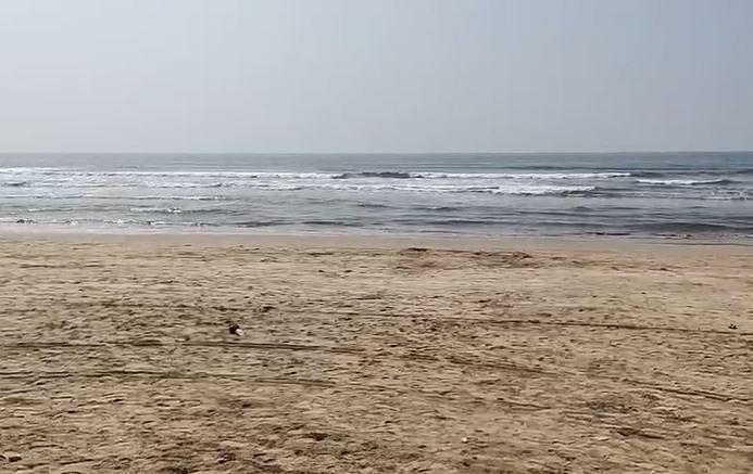 पुण्यातील सहा पर्यटक समुद्रात बुडाले, तिघांचा मृत्यू
