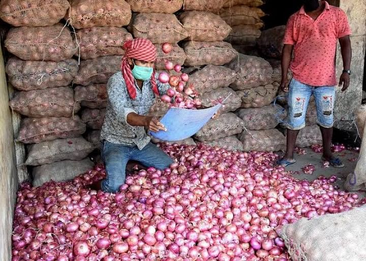 Farmers welcome lifting of ban on onion exports