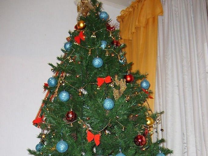 अलायंस मराठी चर्चमध्ये ख्रिसमसनिमित्त विविध कार्यक्रम