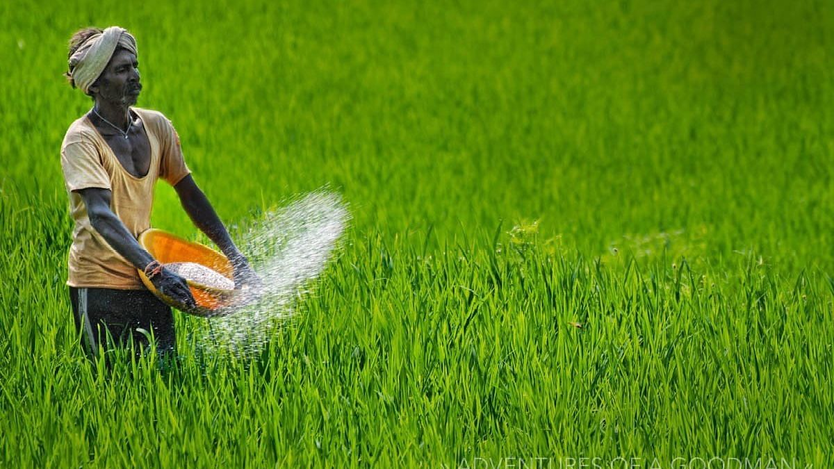 शेतीतील गुंतवणूक वाढणे आवश्यक