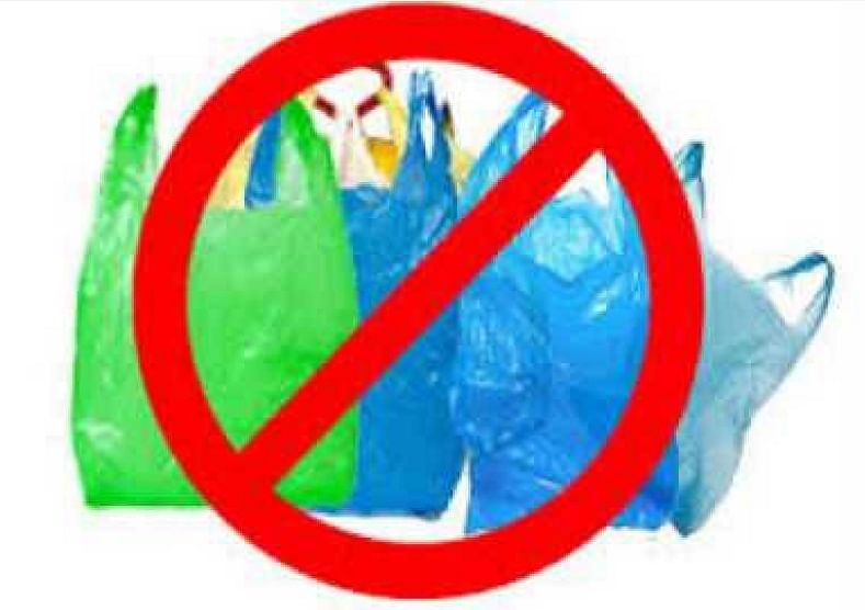 प्लास्टिक विरोधात चार जणांवर कारवाई