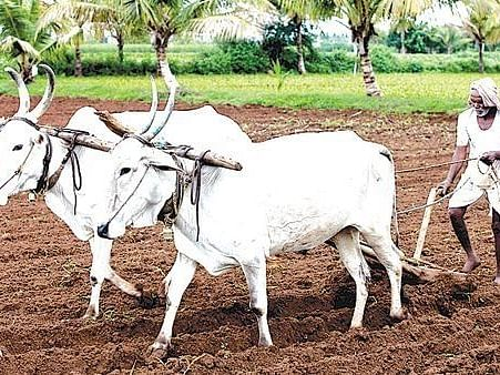 Farmers in district to get financial assistance