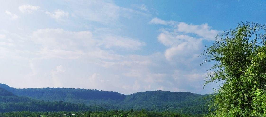 राहुरीत ढगाळ हवामान आणि अवकाळीने रब्बी अडचणीत