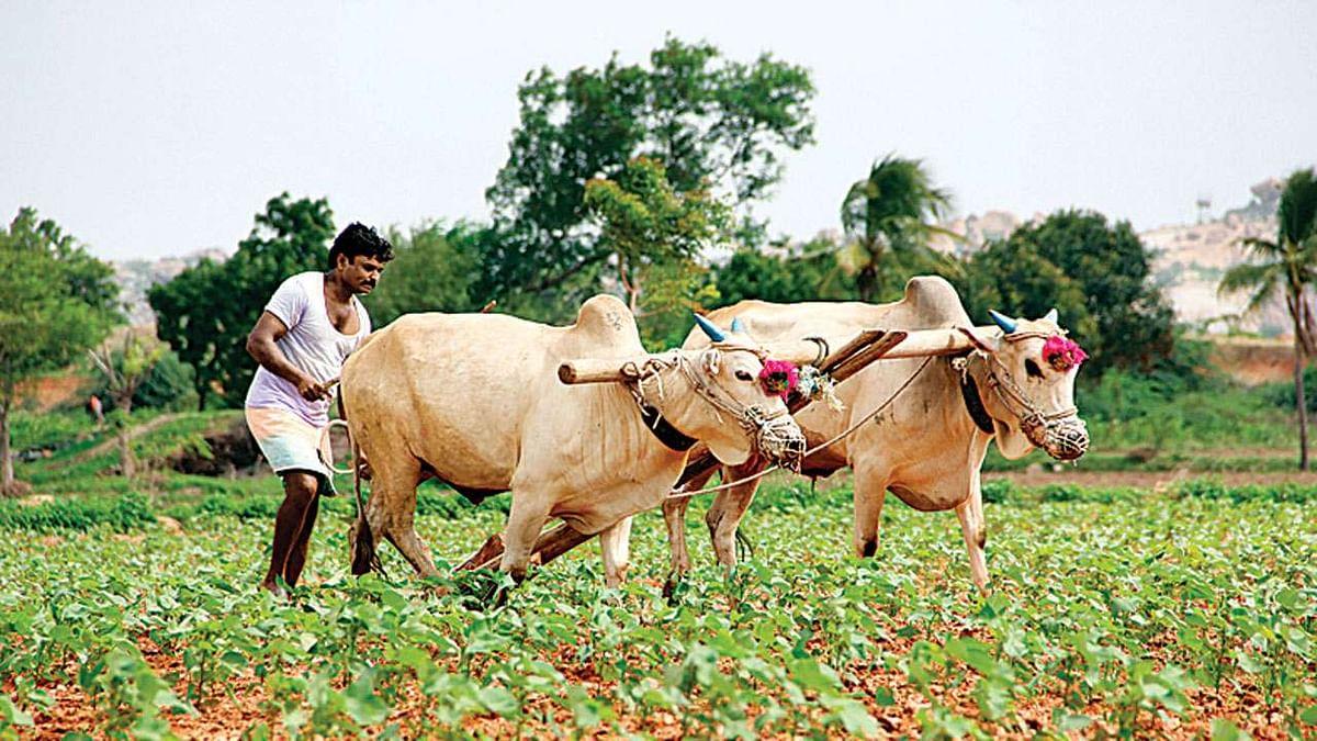 शेतकर्यांना 4 कोटी 28 लाखांची मदत