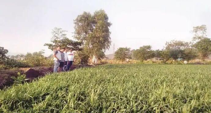 शिक्षक शेतकऱ्याचे शेतीत नवनवीन प्रयोग