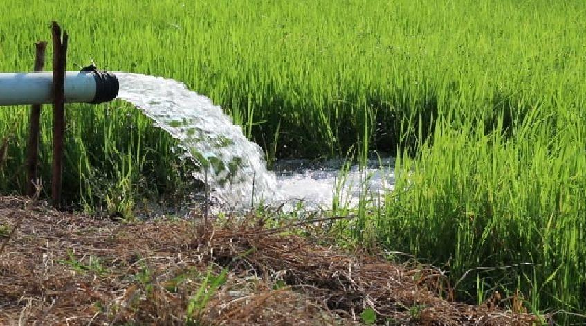 राज्यात 'कृषी ऊर्जा पर्व'