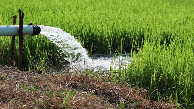 शेतकर्यांना वीज बिल भरण्यास तीन दिवसांची मुदतवाढ