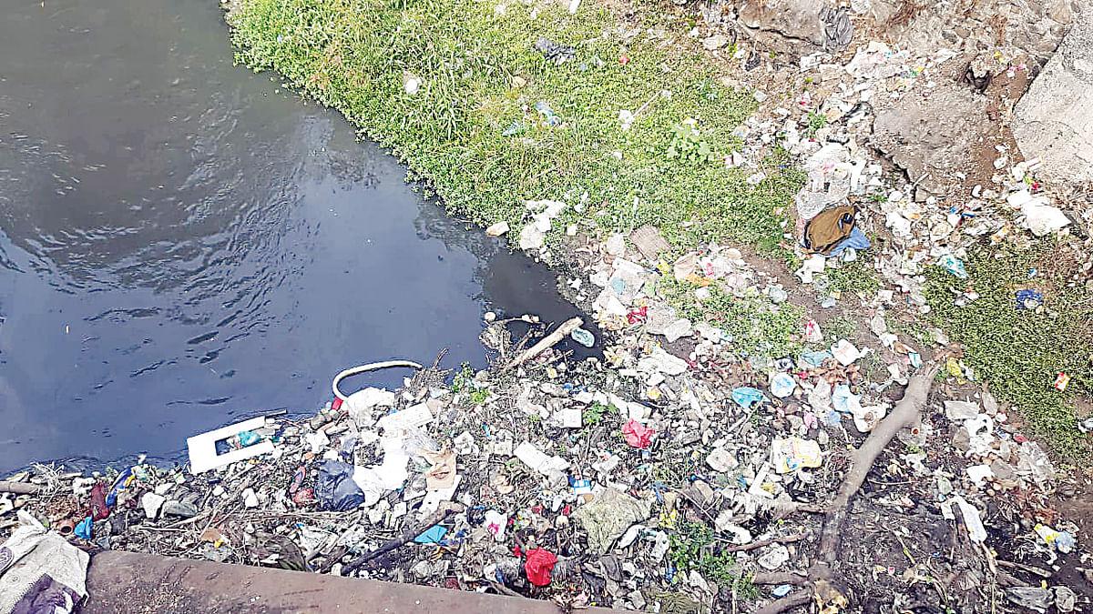 नंदिनी नदीला पुन्हा प्रदूषणाचा विळखा