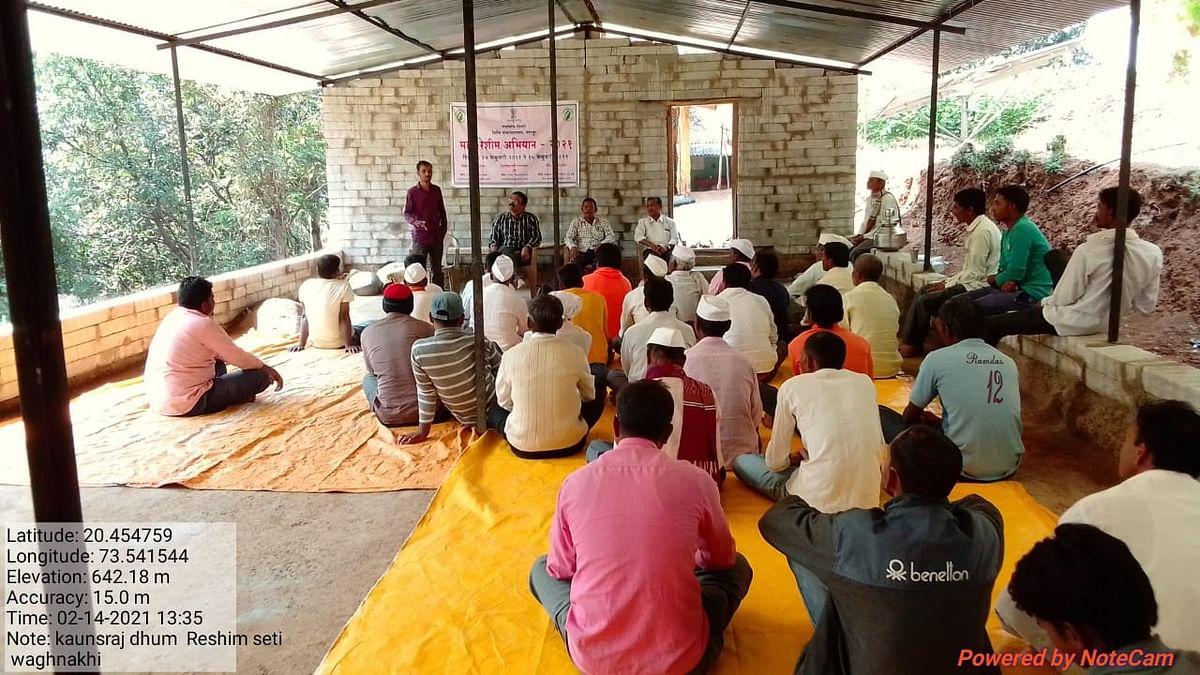 सुरगाणा तालुक्यात रेशीम शेतीचा प्रयोग यशस्वी