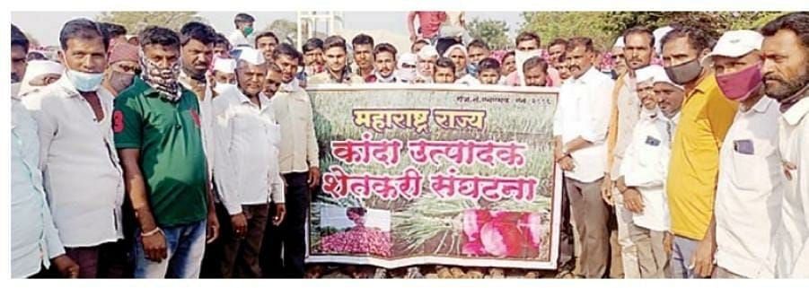Onion growers now fight for new MSP