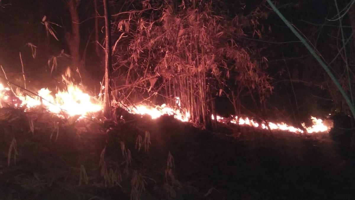 आगीच्या घटनांमुळे बागलाणची वनसंपदा धोक्यात
