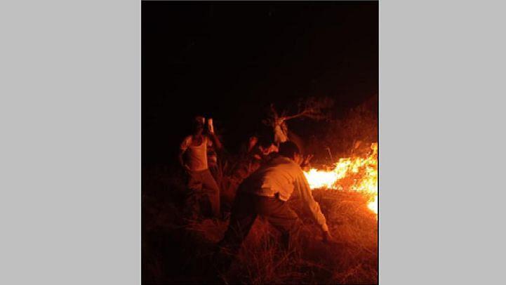 त्र्यंबकेश्वर : पहिनेत ३७ हेक्टर वनक्षेत्र जाळले;  दाेघांना अटक