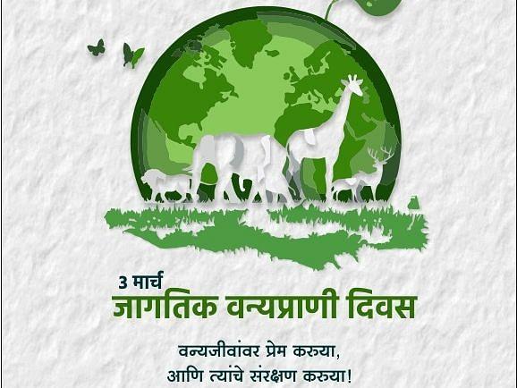 वन्यजीवांचे रक्षण करुया....