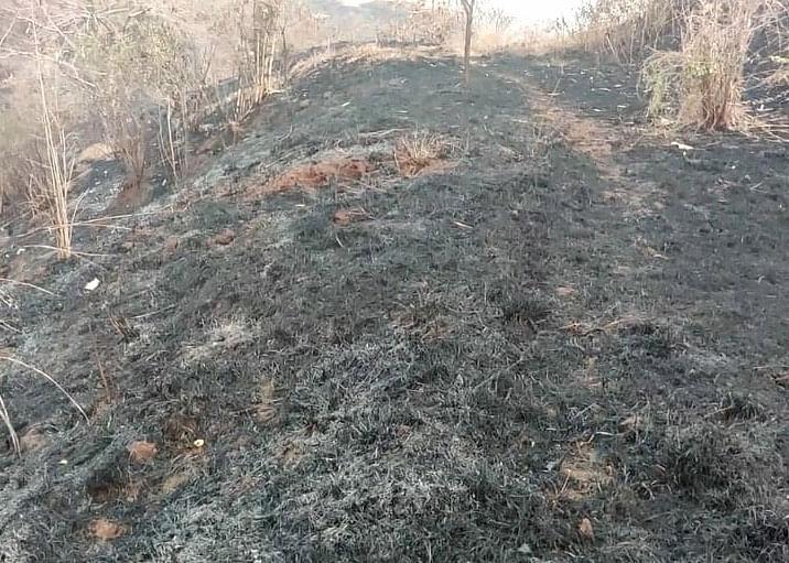 कौठवाडी शिवारात 25 एकर क्षेत्राला आग