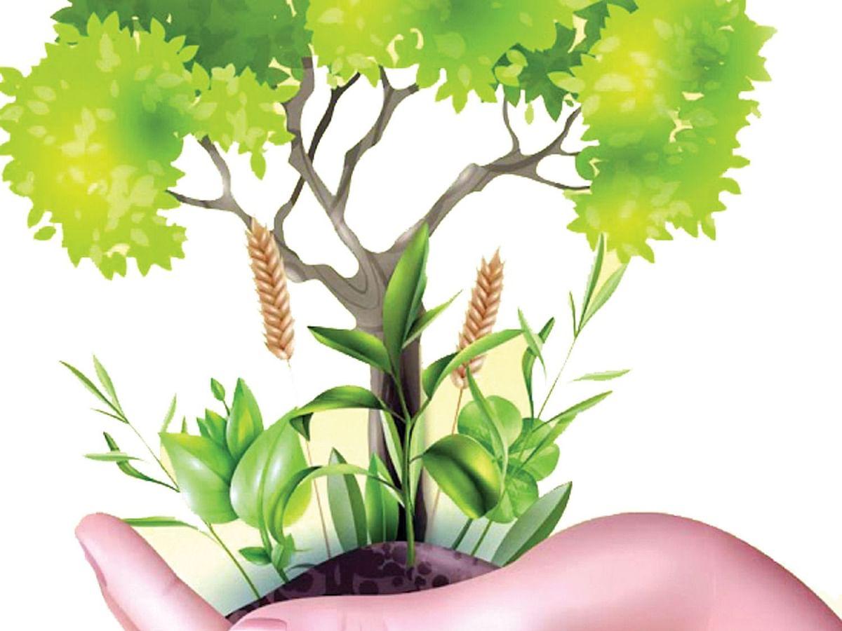 पर्यावरणदिनी ऑनलाइन हरीत वैज्ञानिक द़ृष्टिकोन चाचणी
