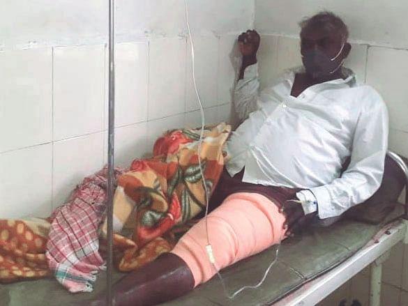 रानडुकराच्या हल्ल्यात शेतकरी जखमी
