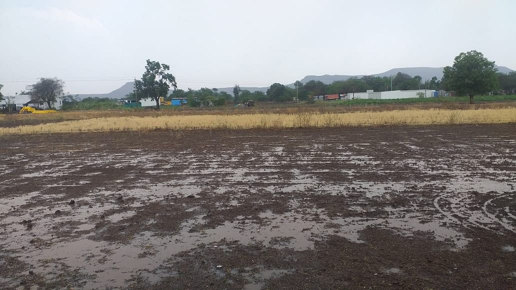 Video : नगर जिल्ह्यात मेघगर्जनेसह बेमोसमी पाऊस