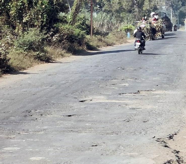 कोल्हार-घोटी राज्य मार्ग : अकोले हद्दीपर्यंतच्या रस्त्याला कुणी वाली आहे का?