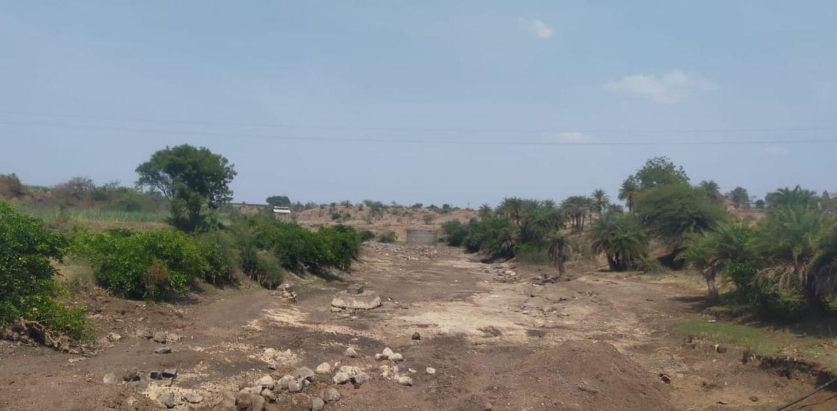 दिंडोरी तालुक्यातील कादवा नदीपात्र कोरडेठाक