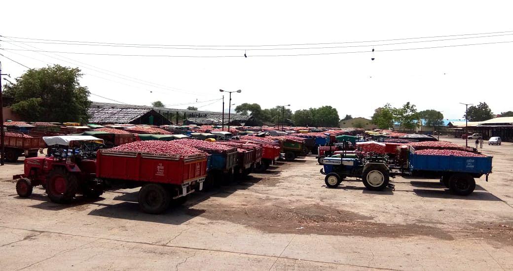Photo Gallery : सटाण्यात कांदा विक्रीसाठी शेकडो वाहने दाखल; शहरातही मोठी गर्दी