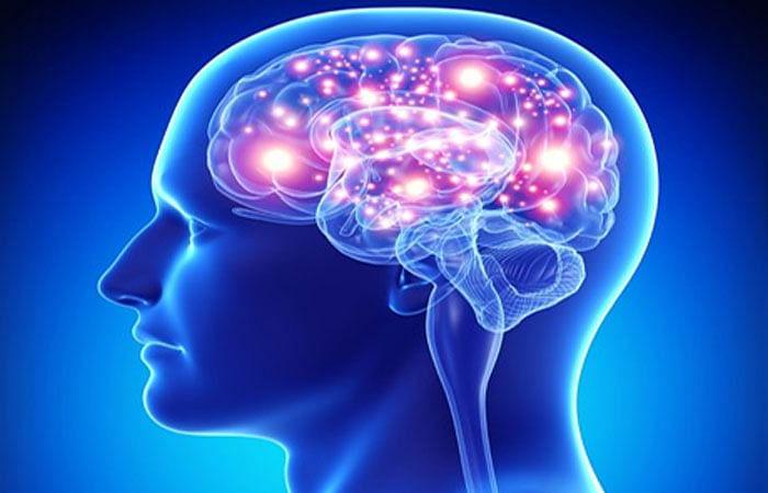 ब्लॉग : भाग-2 माहितीचा आणि मेंदूचा भुलभुलैय्या