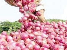 नाफेडने तीन हजार प्रति क्विंटलने कांदा खरेदी करावी