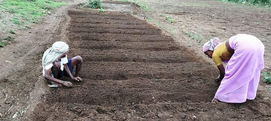 वयाच्या नव्वदीतही शेती फुलवणारा हाडाचा शेतकरी
