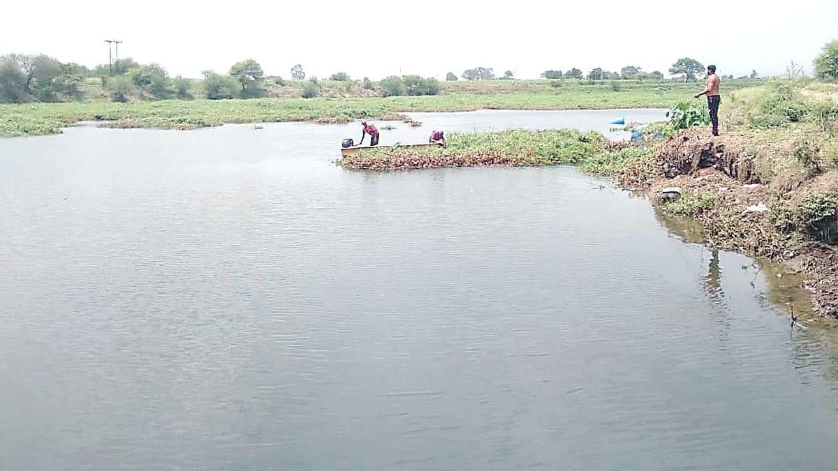 दै. देशदूत वृत्ताची दखल : गोदावरी नदीपात्रातील पानवेली काढण्यास प्रारंभ