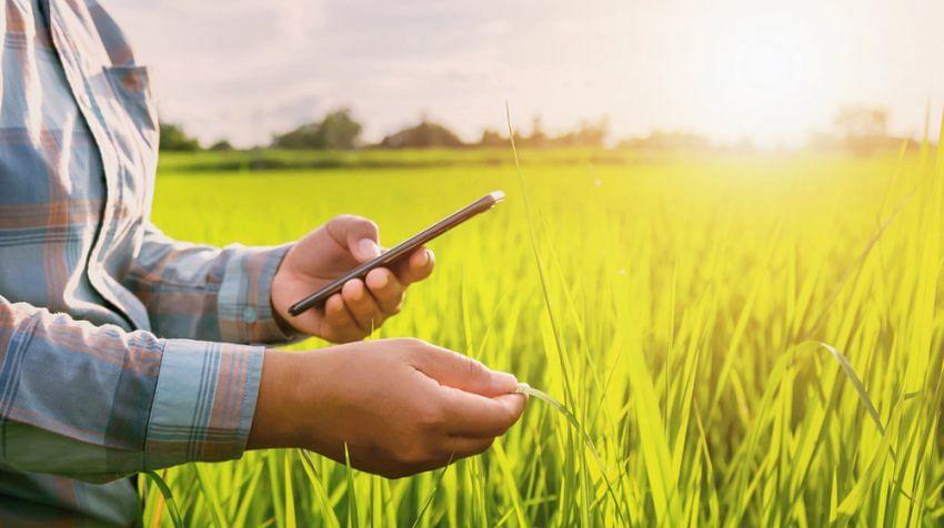 कृषी दिन विशेष : खासगी कृषी कंपन्या देणार शेतकर्यांना पिक व्यवस्थापनाचा तंत्र