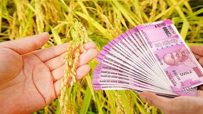 प्रधानमंत्री किसान योजनेतील 205 अपात्र खातेदारांची यादी जाहीर