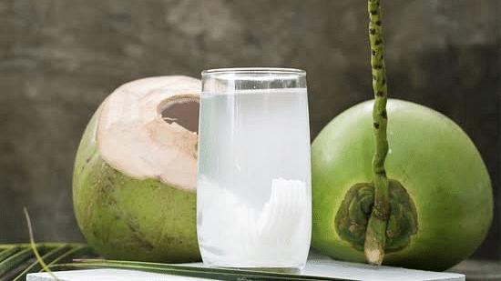 नारळ पाणी पिण्याचे 'हे' आहेत फायदे