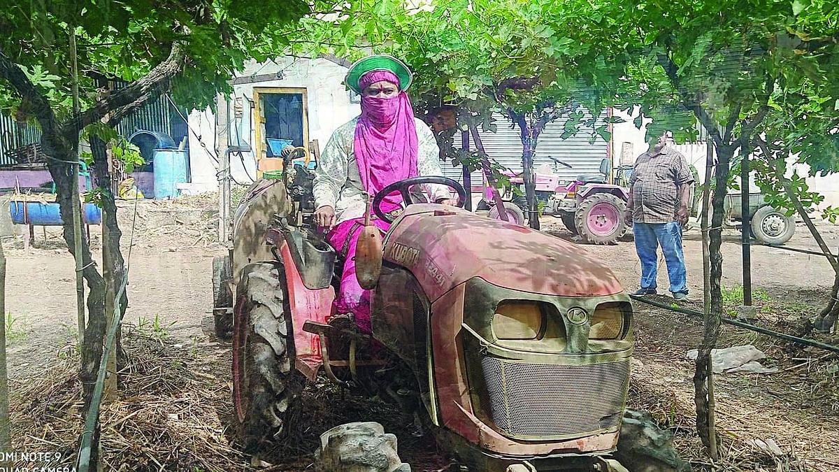 दिंडोरीतील महिलेने केली आधुनिक शेती